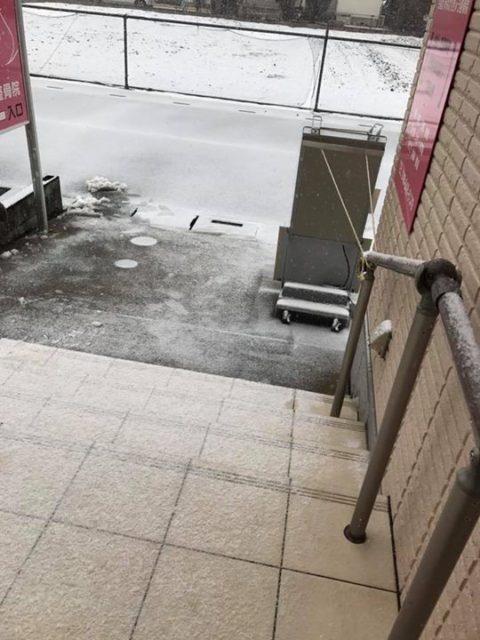 うっすら雪が〜!